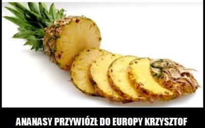 Kto przywiózł do Europy ananasy?