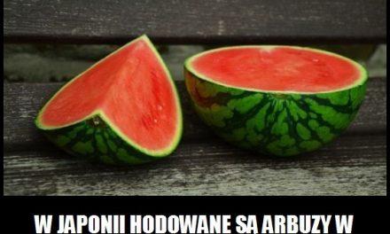W Japonii hodowane są arbuzy w kształcie serca