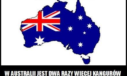 W którym kraju jest więcej kangurów od ludzi?