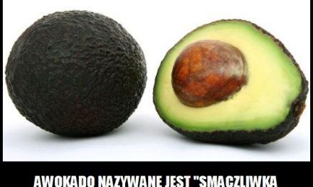 Jak nazywane jest awokado?