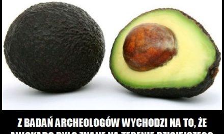 W którym kraju awokado było znane 15 000 lat temu?