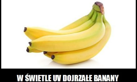 Jak wygląda banan w świetle UV?