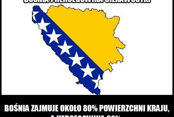 Jaki procent terenu kraju zajmuje Bośnia, a jaki Hercegowina?