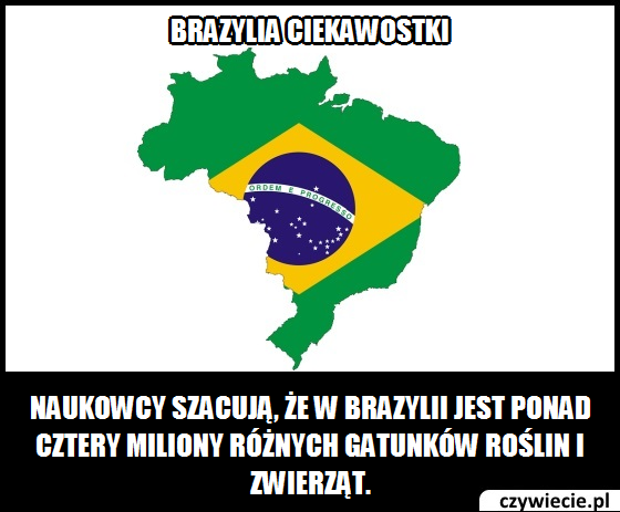 Brazylia ciekawostka 2