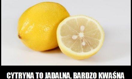 Czym tak naprawdę jest cytryna?