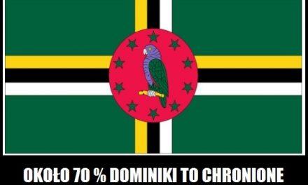 Jaką część Dominiki porastają lasy deszczowe?