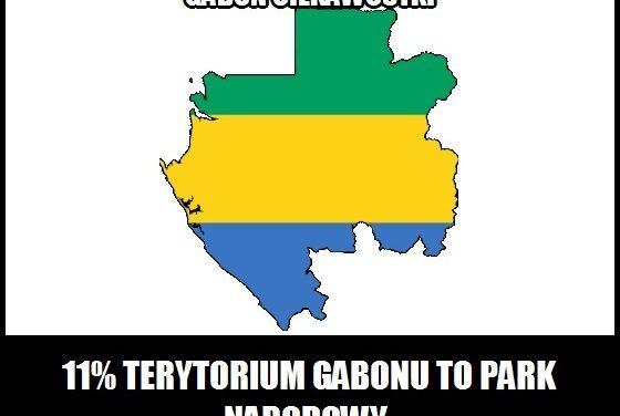 Jaki procent Gabonu stanowią parki narodowe?