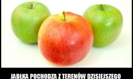 Skąd pochodzą jabłka?