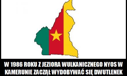 Co zaczęło wydobywać się w 1986 roku z jeziora wulkanicznego Nyos w Kamerunie?