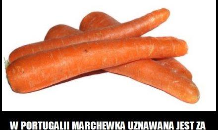 W którym kraju marchewka uznawana jest za owoc?