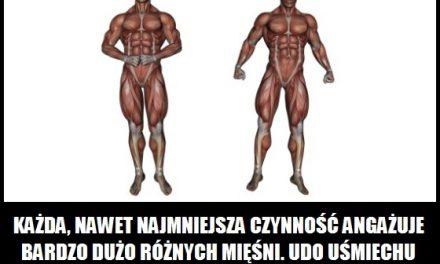 Ile mięśni angażujemy do zrobienia jednego kroku?