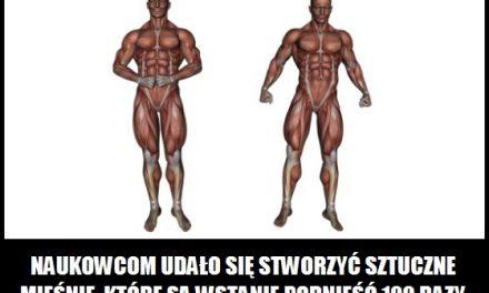 Jak silne są sztuczne mięśnie?
