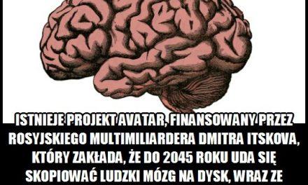 Projekt Avatar zakłada, że do 2045 roku uda się skopiować ludzki mózg