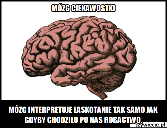 Jak mózg interpretuje łaskotanie?