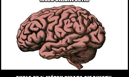 Z ilu procent wody zbudowany jest mózg?