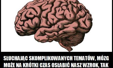Kiedy mózg może na krótki czas osłabić nasz wzrok?