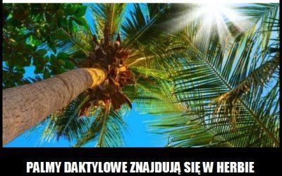 W herbie których krajów znajdują się palmy daktylowe?