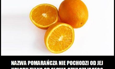 Pomarańcze ciekawostka 6