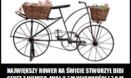 Jaką długość i wysokość miał największy rower na świecie?