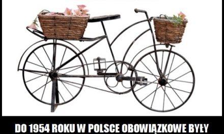 Do którego roku w Polsce obowiązywały rowerowe tablice rejestracyjne?