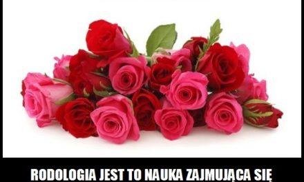 Jak nazywa się nauka zajmująca się tematyką róż?