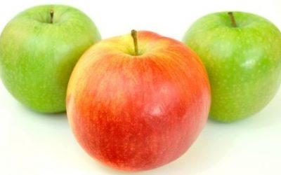 Quiz o owocach – część 1