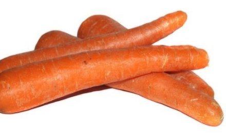 Quiz o warzywach – część 1