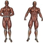 Quiz o anatomii – część 3
