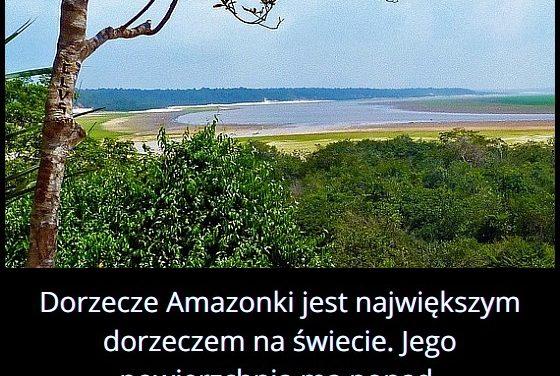 Jaką powierzchnię ma dorzecze Amazonki?