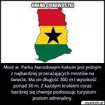 Most w Parku Narodowym Kakum jest jednym z…