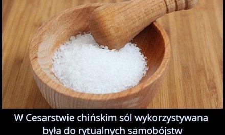 Do czego wykorzystywana była sól w cesarstwie chińskim?