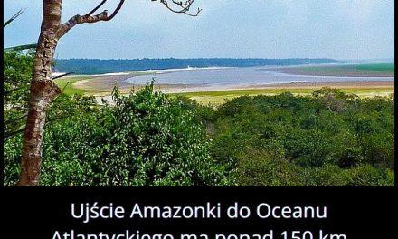 Jaką szerokość   ma ujście Amazonki?