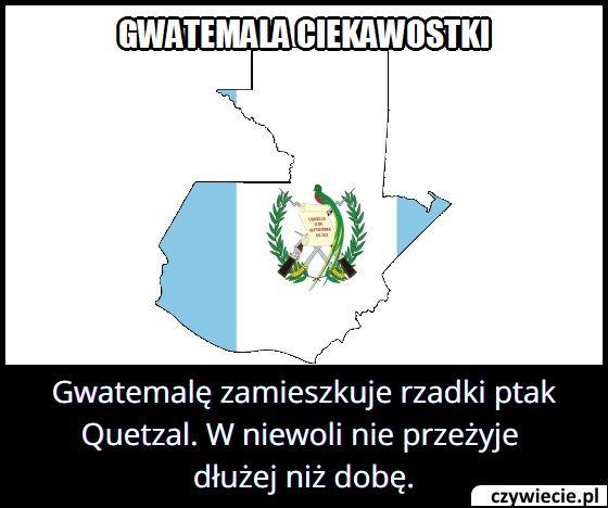 Ile w niewoli   żyje ptak Quetzal z Gwatemali?