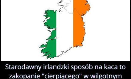 Jaki jest   starodawny irlandzki sposób na kaca?