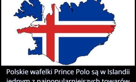 Który polski produkt jest jednym z najpopularniejszych towarów importowanych na Islandii?