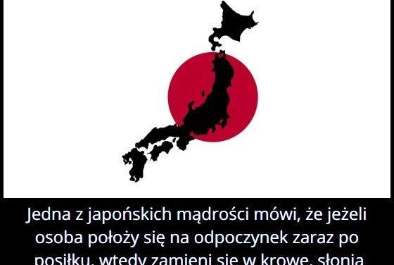 Jedna z japońskich mądrości mówi, że jeżeli osoba położy się na odpoczynek zaraz po posiłku, wtedy…