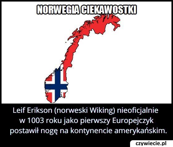 W którym roku norweski Wiking Leif Erikson nieoficjalnie jako pierwszy Europejczyk dopłynął do Ameryki?