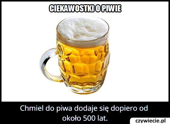 Od ilu lat   zaczęto dodawać chmiel do piwa?