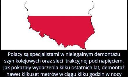 Polacy są specjalistami w nielegalnym demontażu szyn kolejowych oraz sieci trakcyjnej pod napięciem?