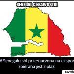 Skąd w   Senegalu bierze się sól przeznaczana na eksport?