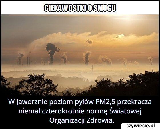 Które miasto w   Polsce uznawane jest za jedno z najbardziej zanieczyszczonych w Europie?