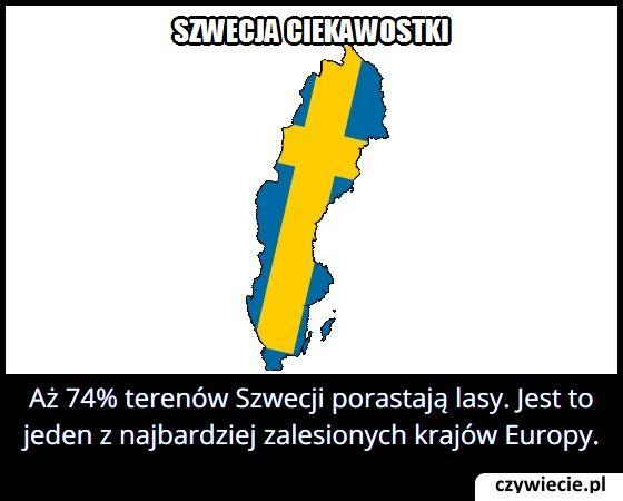 Ile procent   terenów Szwecji porastają lasy?