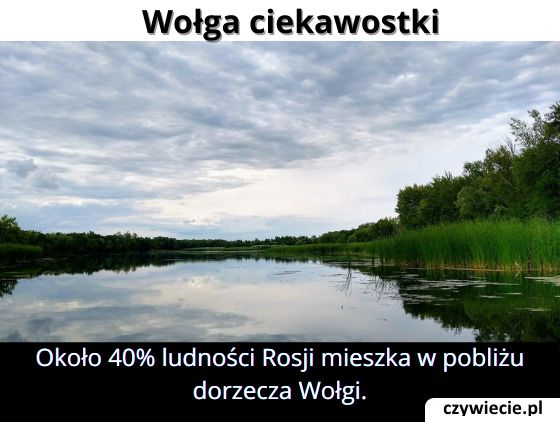 Ile procent ludności Rosji mieszka w pobliżu dorzecza Wołgi?