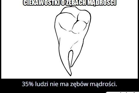 Ile procent   ludzi nie ma zębów mądrości?