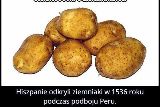 W którym roku   Hiszpanie odkryli ziemniaki?