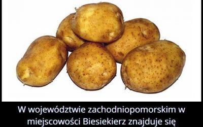 Gdzie w Polsce   znajduje się pomnik ziemniaka?